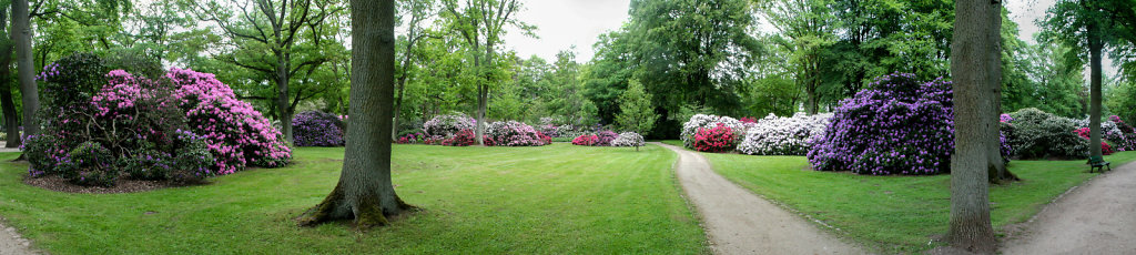 Panorama Rhododendron-Park Bremen